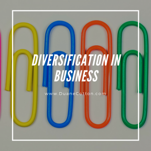 diversification in business